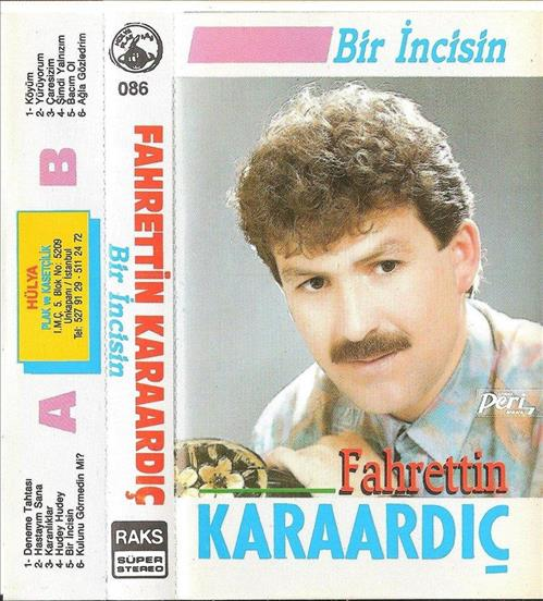 Bir İncisin